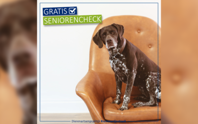 Gratis Seniorencheck in oktober, november en december